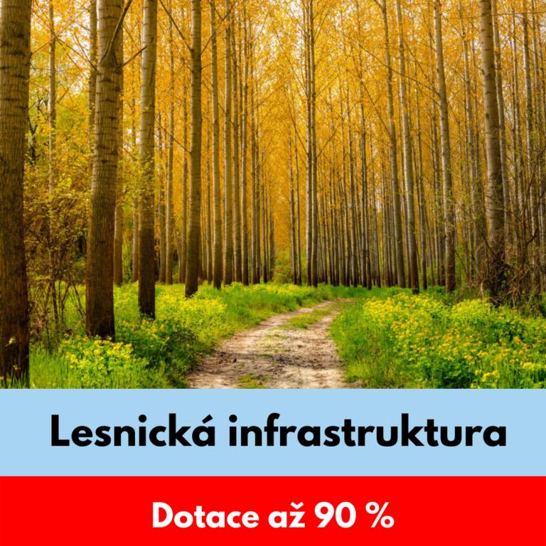 Lesnická infrastruktura